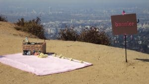 Marriage Proposal Hollywood Terrance Setup