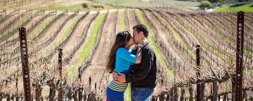 Vineyard-Marriage-Proposal-500x200